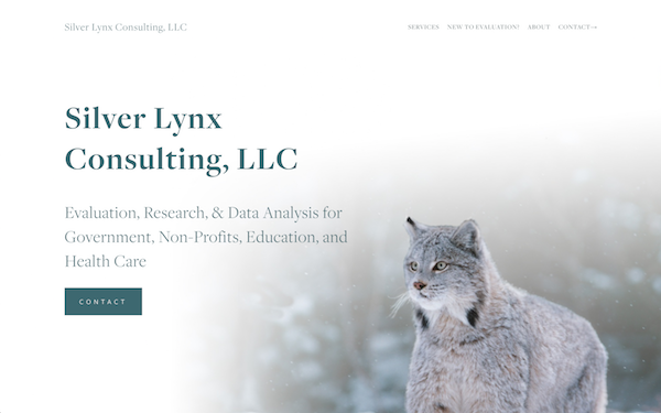 Amy's Consulting Site